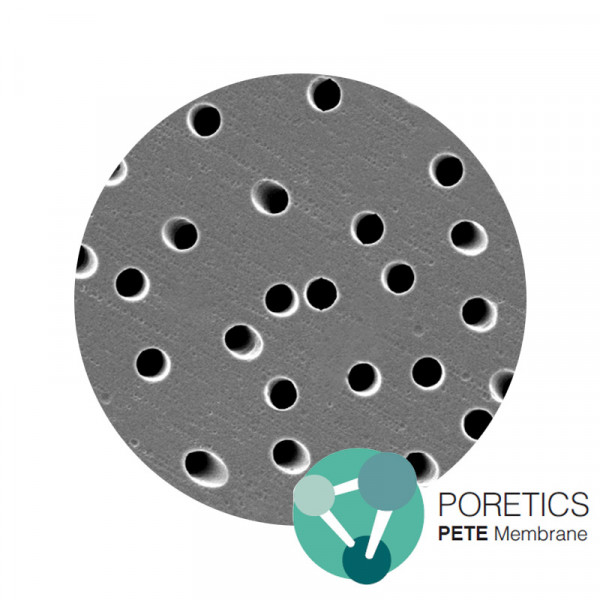 Polyester Track Etched (PETE) Membrane Poretics™
