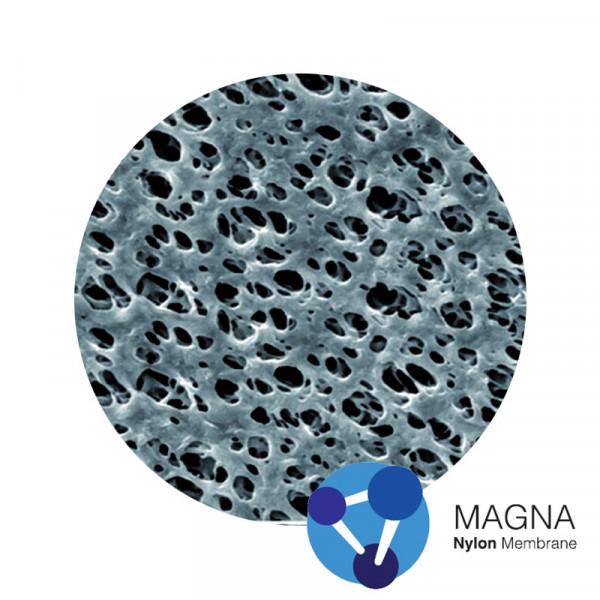 Nylon (NY) Membrane Magna™