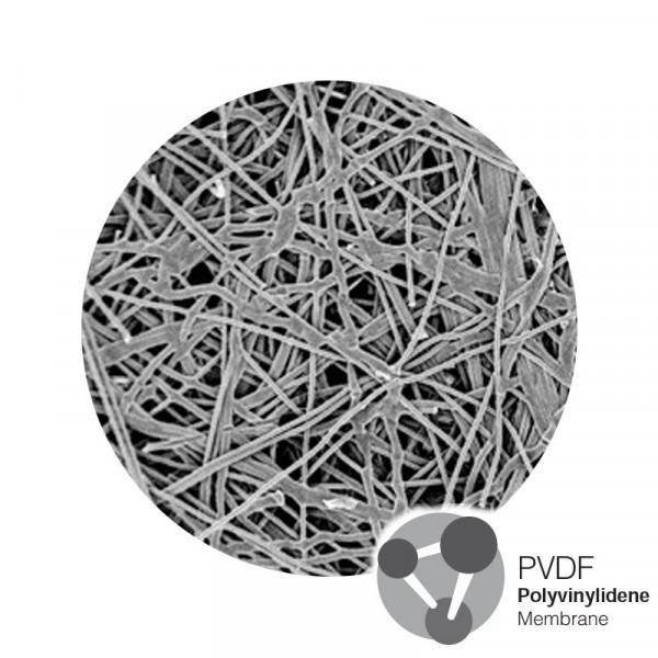 Polytetrafluoroethylene (PTFE) Hydrophilic Membrane