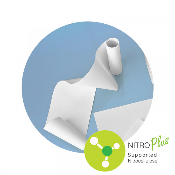 Supported Nitrocellulose (MCE) NitroPlus